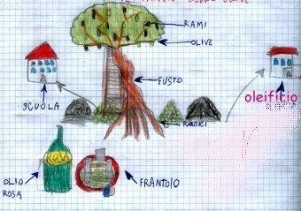 Curset d'olivicultura 2009