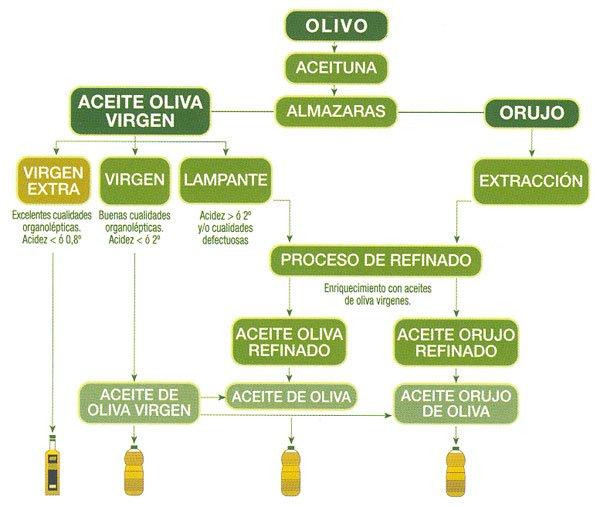 Classificació dels olis d'oliva